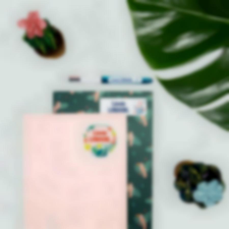 2 pack etiquettes vetements objets offre decouverte ludistart tropical