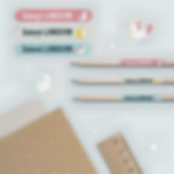 3 pack etiquettes ecole marquer fournitures stylo trousse licorne