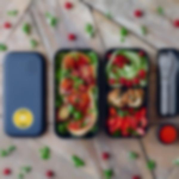 lunchbox adulte monbento original onys 04