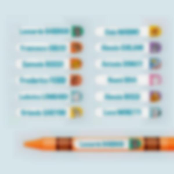 mini adesvi penne matite disney animali