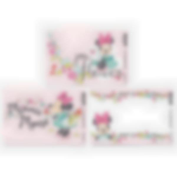 3 cartes magnétiques pour Ludibox - boîte à goûter – Disney Minnie