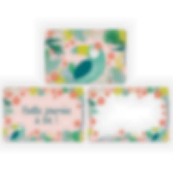 3 cartes magnétiques pour Ludibox - boîte à goûter – Tropical