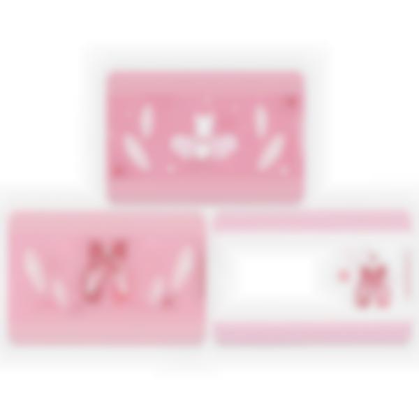 3 cartes magnétiques pour Ludibox - boîte à goûter – Ballerine
